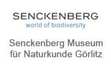 Senckenberg Museum für Naturkunde Görlitz