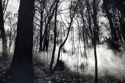 FOTO UND COPYRIGHT: Anja Knobloch