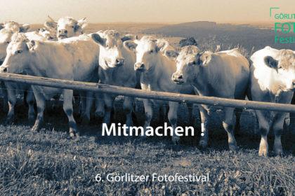 Mitmachen GFF2020