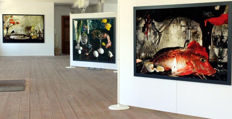 Ausstellung Vera Mercer im Fotomuseum Görlitz